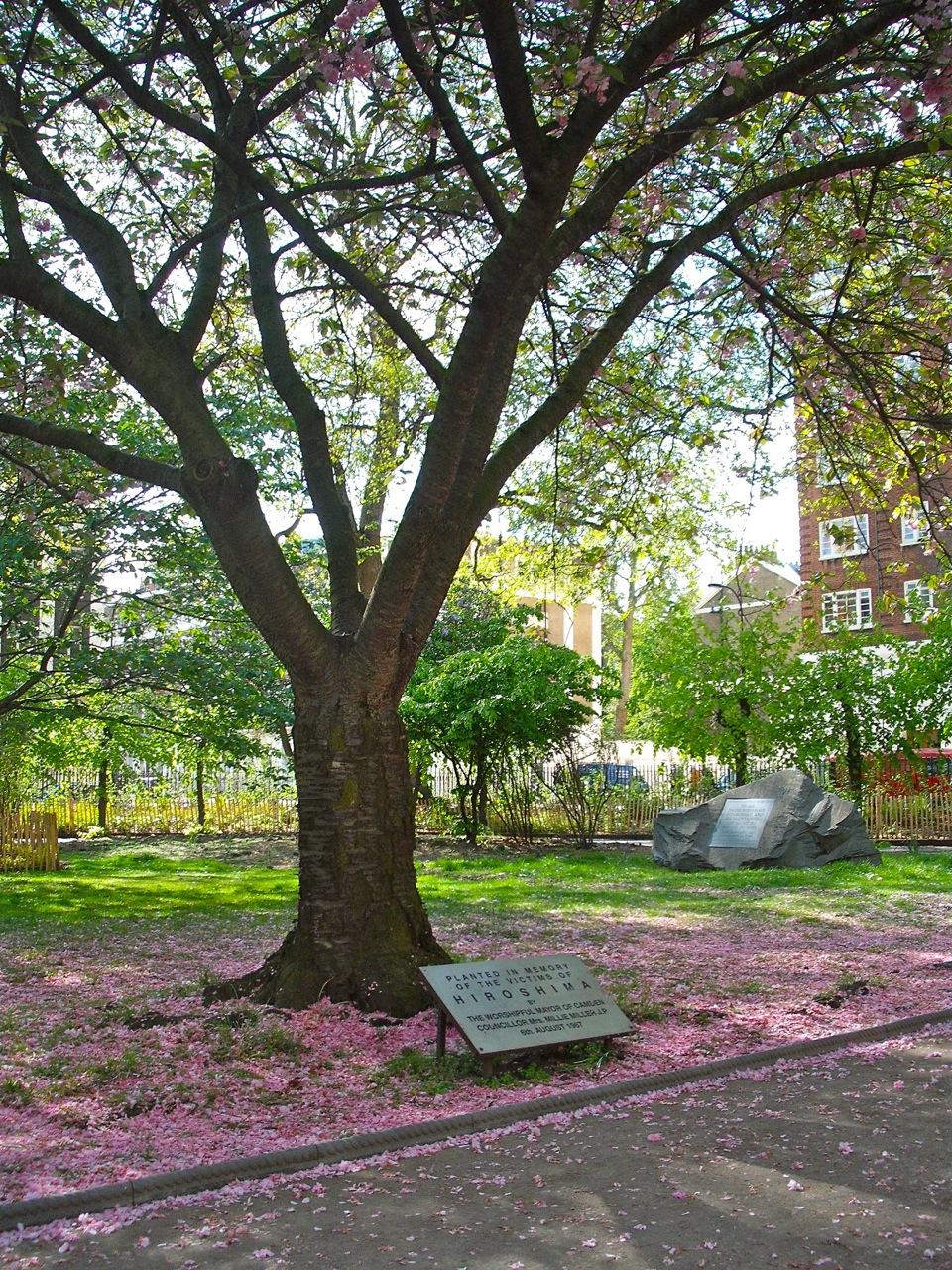 Cherry Blossom War Memorial