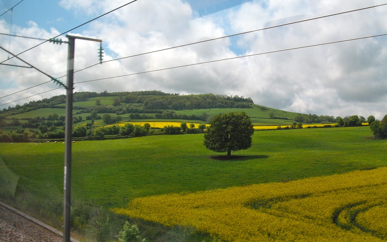 French Countryside 4