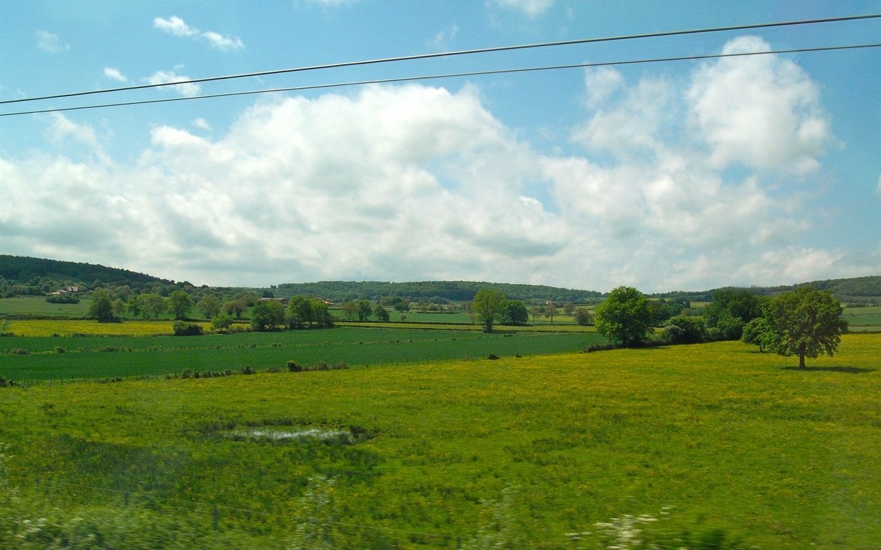 French Countryside 6