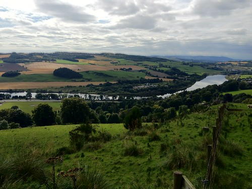 A90 from Kinnoull Hill