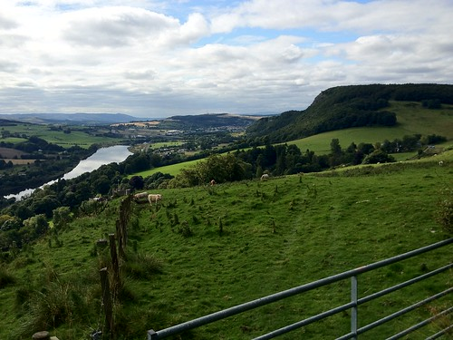 A90 From Kinnoull Hill 2