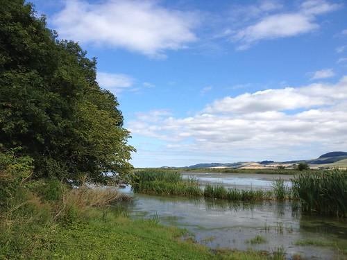River Tay at Port Allen 2
