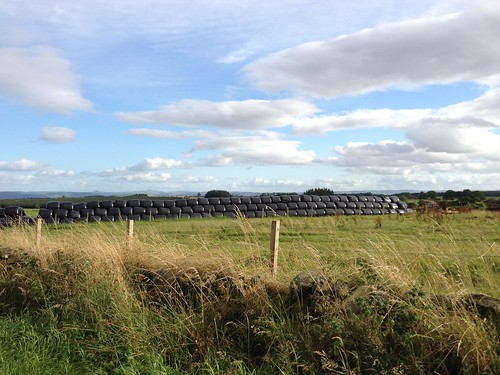 Bales, Wrapped